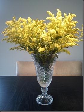 vaso casa verônica 1
