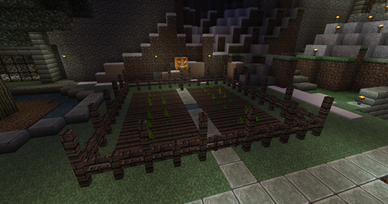 Minecraft Pumpkin Patch
