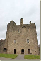03.Castillo de Roscrea