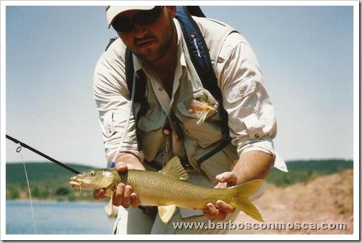 www.barbosconmosca.com