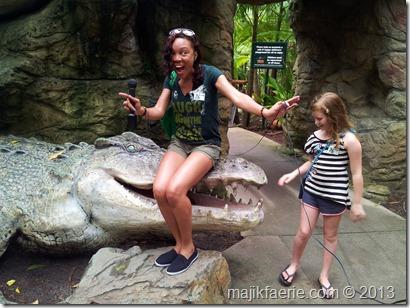 47 croc