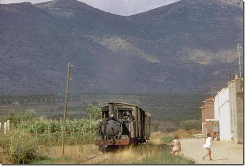 TrainCol (53)
