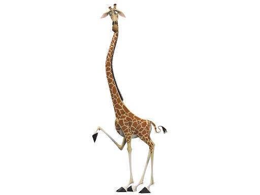Melman jirafa de madagascar - Imagui