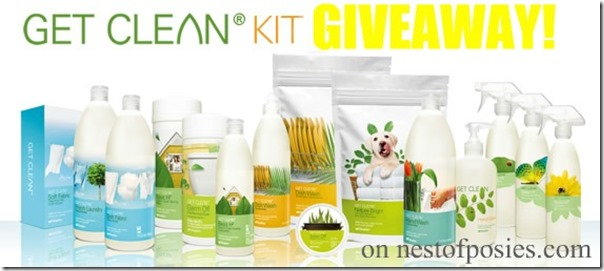 cleankitgiveaway Nest of Posies