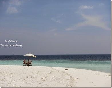 馬爾地夫 野餐島 浮潛 (62)