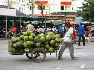 coconut cart