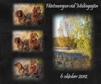 Hösten 1