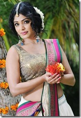 rima_kallingal_beautiful_in_halfsaree_photos