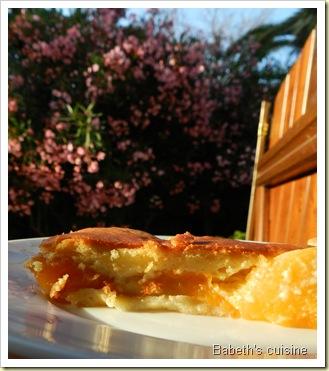 gateau abricots2