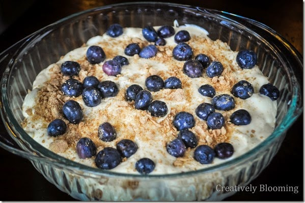 Blueberry Graham Pudding Dessert