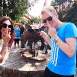 Natalia and Matt making fun of Mr. Wild Boar in Vaughan, Ontario, Canada