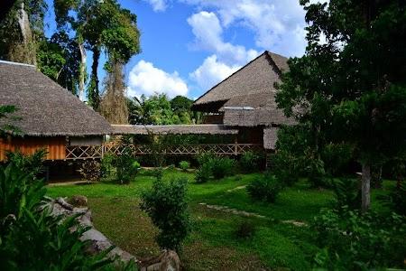 Jungla amazoniana. Ecoamazonia Lodge