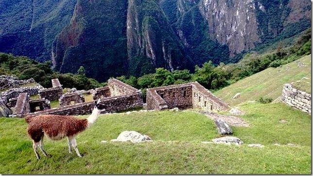 Machu_Picchu_WP_20130706_078