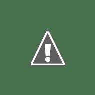 5_infante_robots_aligned.JPG