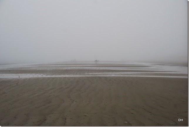 03-20-15 C Jekyll Island (98)