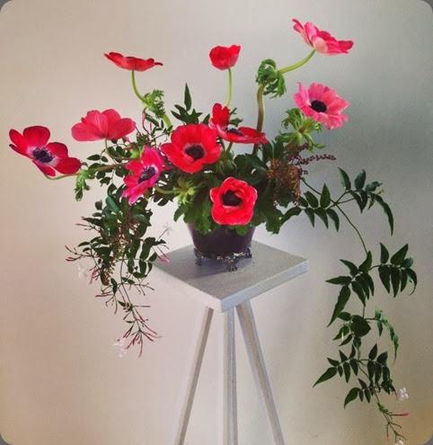 anemone 1002880_374419932684570_475328875_n fleuriste flowers by rebecca uhlmann
