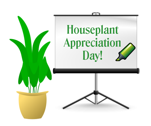 houseplant-appreciation-day-graphic