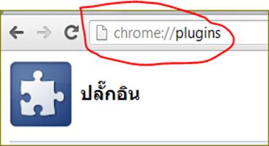 ยกเลิกอ่านเอกสาร pdf ผ่าน Google chrome