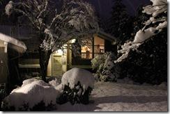 snowpocalypse  27