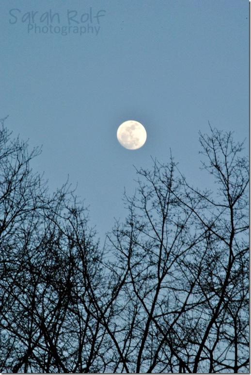 almost-full-moon