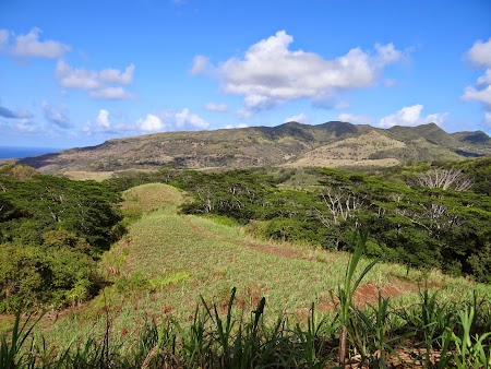 12. Peisaj Mauritius.JPG
