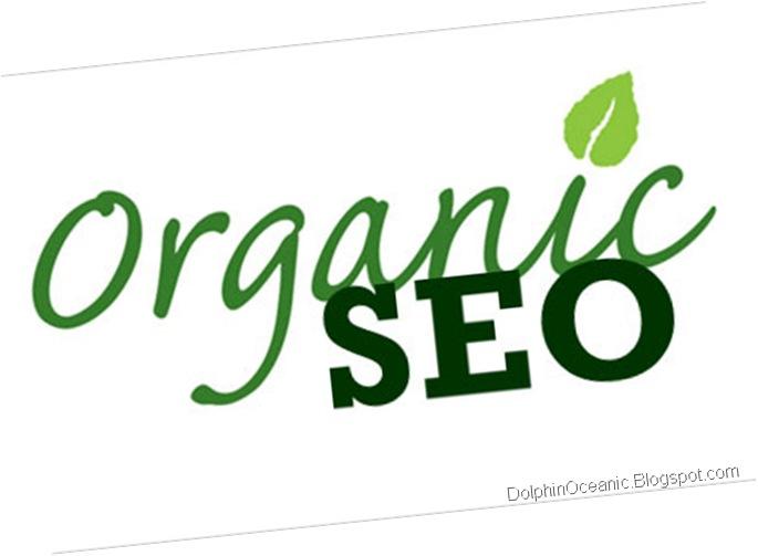 SEO Natural - SEO Organic