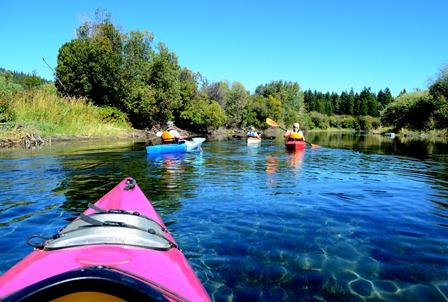 crystal clear water on Harriman Creek