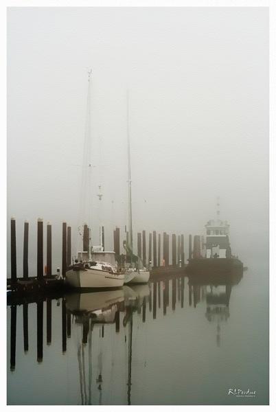Foggy morning 3art