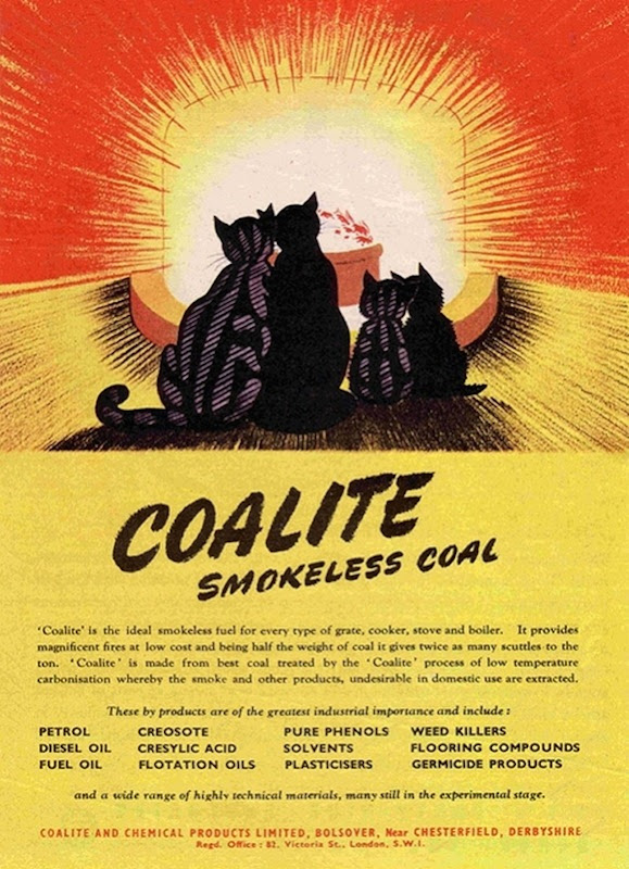 Vintage-Cat-Advertisements-19