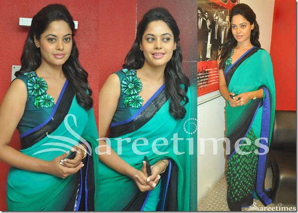 Bindu_Madhavi_Half_and_Half_Saree