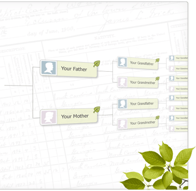 Harnessing the Power of Online Family Trees