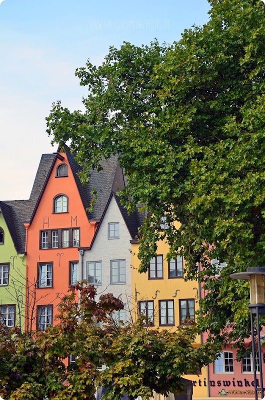 Köln2014 amRheinufer10