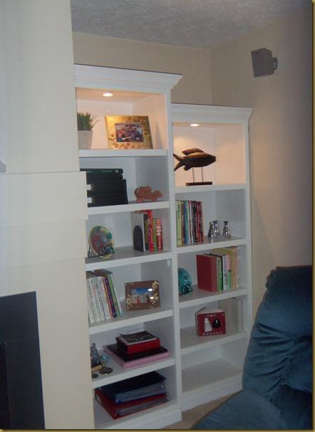 z blog bookcases 010