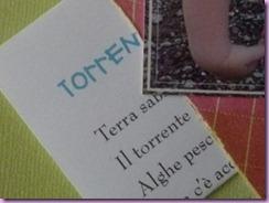 IL TORRENTE (5)