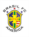 bfca logo png.png