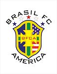 bfca logo png.png