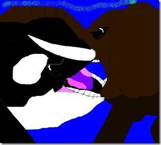 Now-We-Lock-Our-Mouths-orca-killer-whale-vs-elephant-24960522-858-629