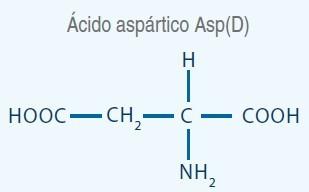acido asparatico