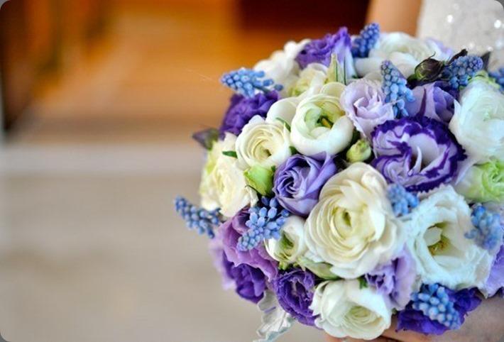 69-116 solomon bloemen