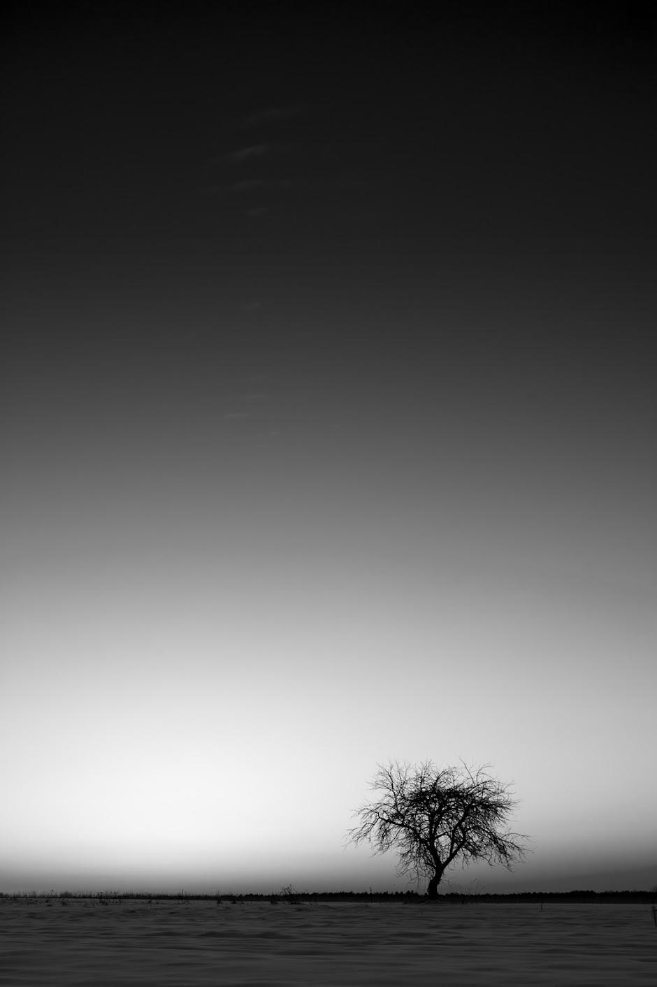 Wysocki-Artur---Krajobraz-minimalny.jpg