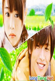 Tình Yêu Định Mệnh Chợt Đến - Shokubutsu Zukan - Evergreen Love