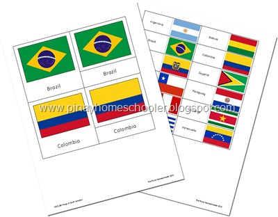 Flags of South America Preview