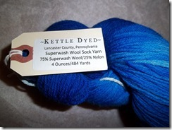 Blue Kettle Dyed Sock 2