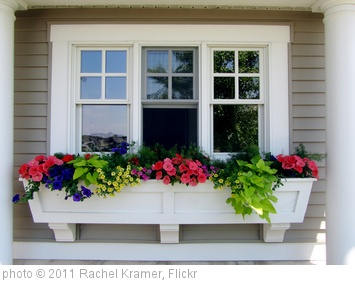 'Window box perfection' photo (c) 2011, Rachel Kramer - license: http://creativecommons.org/licenses/by/2.0/