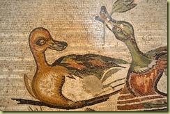 Animal Scene Detail-1