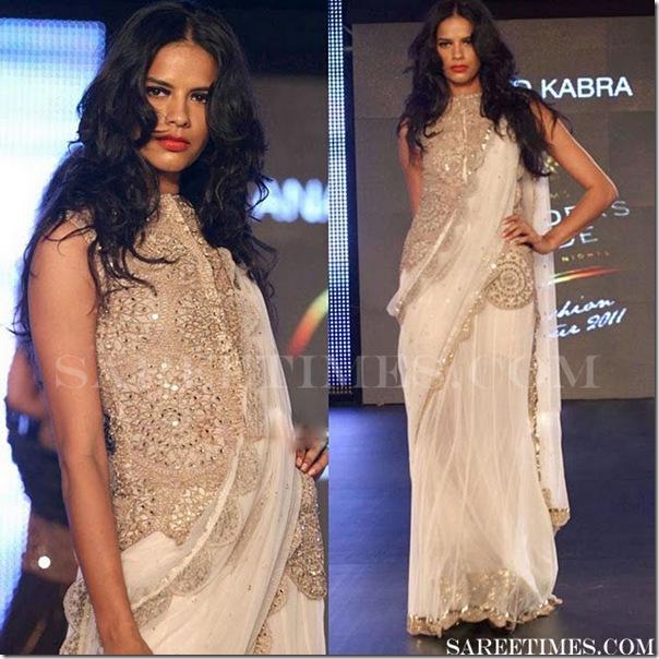 Anand_Kabra_Designer_Saree