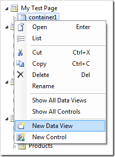 New Data View context menu option on the container.