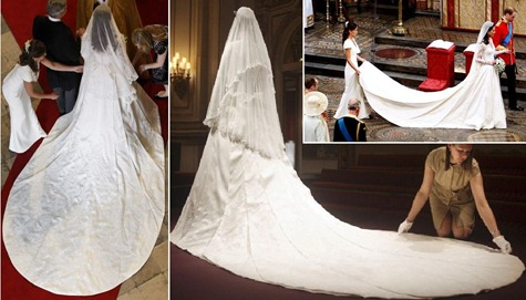 I Love The Shape Of Train Its So Nice Dress Was 2 Meters And 70 Centimetres Or Near 8 Foot 10 Inches As Well Had Lace On It