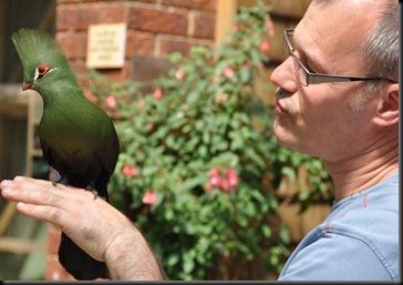 Steve holding Damien - Green Crested Touraco DSC_1129
