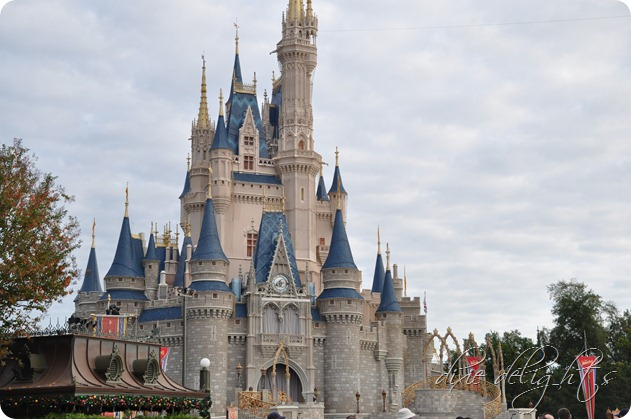 Disney December 2012 590